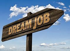 bloging posao iz snova